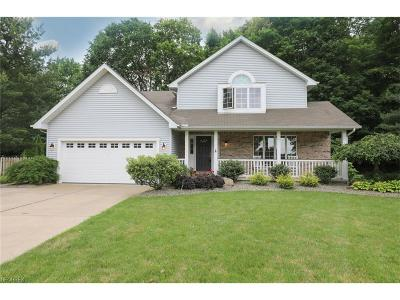 Youngstown Single Family Home For Sale: 7383 East Huntington Dr