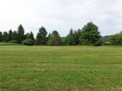New Philadelphia OH Residential Lots & Land For Sale: $84,900