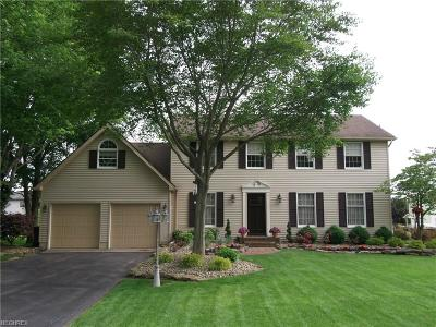 Canfield Single Family Home For Sale: 6901 Slippery Rock Dr