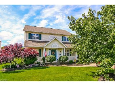 Olmsted Falls Single Family Home For Sale: 27039 Valeside Ln