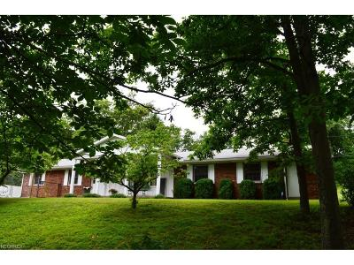 Marietta Single Family Home For Sale: 3815 State Route 26