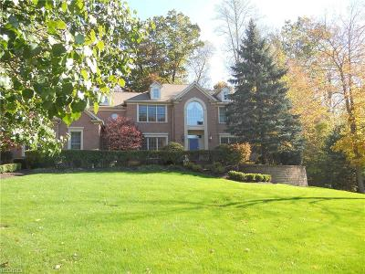 Chagrin Falls Single Family Home For Sale: 17361 Owls Hollow Ln