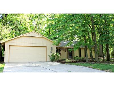 Strongsville Single Family Home For Sale: 9658 Plum Brook Ln