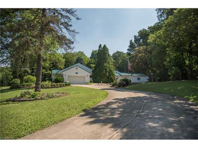 Mantua Single Family Home For Sale: 11106 Peck Rd