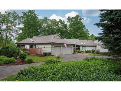 Chagrin Falls Condo/Townhouse For Sale: 441 Long Dr