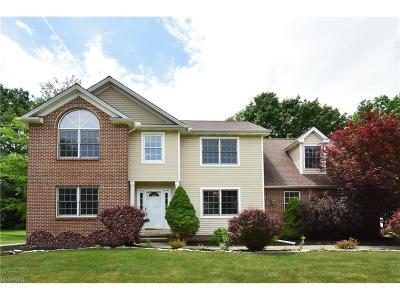 Mentor Single Family Home For Sale: 9060 Hidden Glen Dr