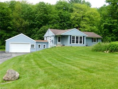 Geauga County Single Family Home For Sale: 17954 English Dr