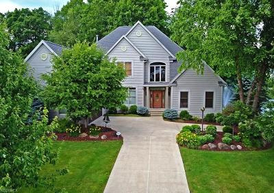 Copley Single Family Home For Sale: 4549 Regal Dr