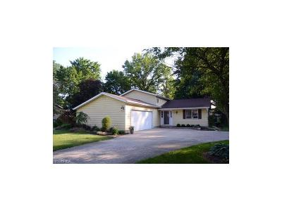 Olmsted Falls Single Family Home For Sale: 26040 Hickory Ln