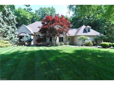 Avon Lake Single Family Home For Sale: 360 Britannia