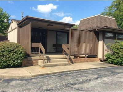 Commercial For Sale: 4810 Mahoning Avenue