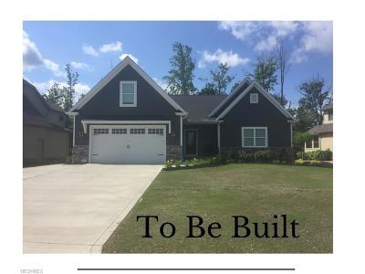 Mentor Single Family Home For Sale: V/L Johnnycake Ridge Rd