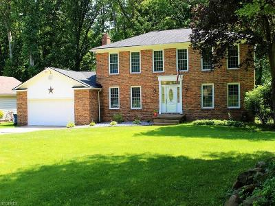Youngstown Single Family Home For Sale: 5183 Sampson Dr