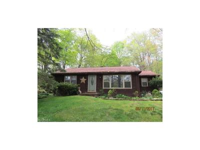 Chagrin Falls Single Family Home For Sale: 7996 Scotland Dr