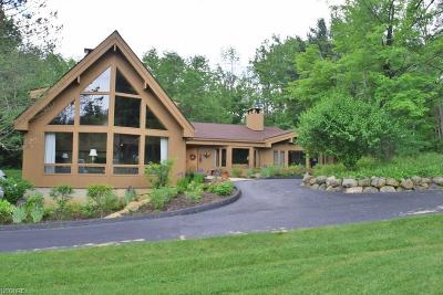 Geauga County Single Family Home For Sale: 14875 County Line Rd