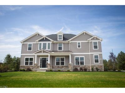 Summit County Single Family Home For Sale: 5772 Timberline Trl