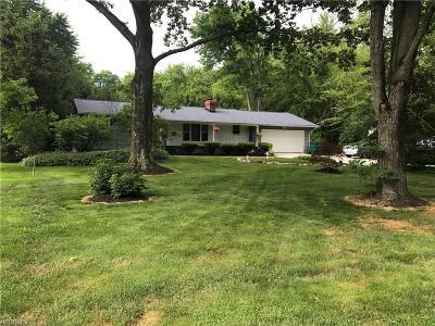 Kirtland Single Family Home For Sale: 8753 Far Bar Rd