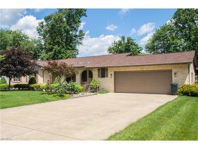 Youngstown Single Family Home For Sale: 5356 South Saratoga Ave