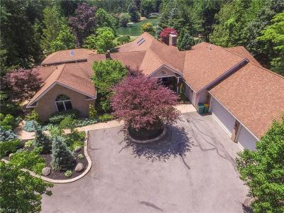 Mentor Single Family Home For Sale: 7202 Chillicothe Rd