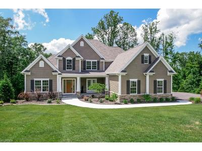 Chagrin Falls Single Family Home For Sale: 8140 Silica Rdg