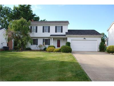 Solon OH Single Family Home For Sale: $268,000