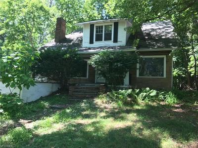 Willoughby Single Family Home For Sale: 37641 & 37649 Euclid Ave