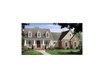 Poland Single Family Home For Sale: 6622 Chestnut Hill