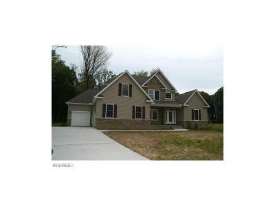 Chardon Single Family Home For Sale: 11785 Julie Dr