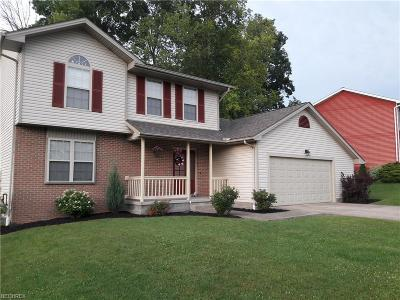 Canfield Single Family Home For Sale: 6950 Slippery Rock Dr