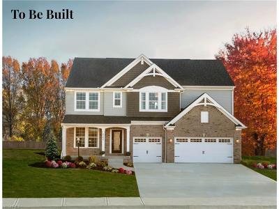 Westlake Single Family Home For Sale: 31540 Center Ridge Rd