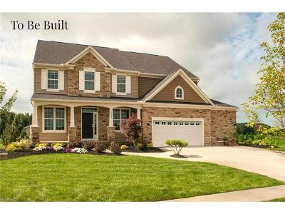 Westlake Single Family Home For Sale: 31542 Center Ridge Rd