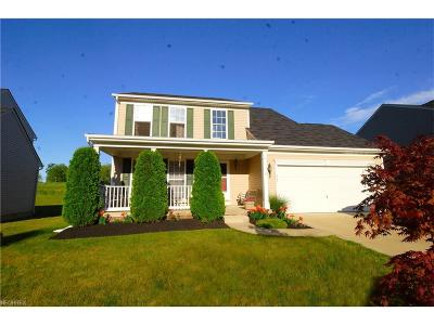 Painesville Single Family Home For Sale: 563 Colonial Dr