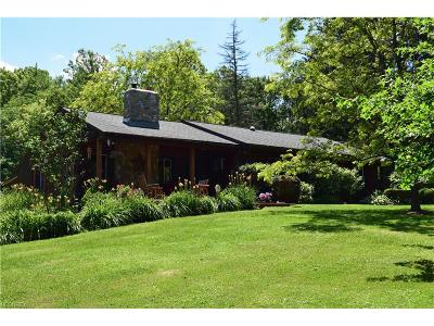 Chesterland Single Family Home For Sale: 9583 Sherman Rd