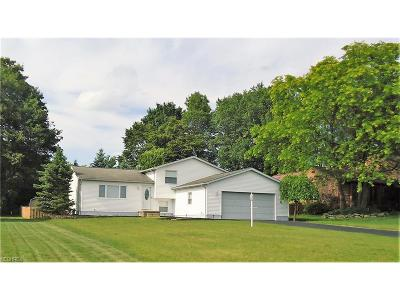 Canfield Single Family Home For Sale: 6932 Slippery Rock Dr