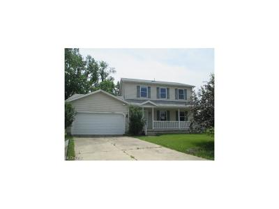 Licking County Single Family Home For Sale: 1035 Jones Ave