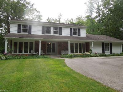 Kirtland Hills Single Family Home For Sale: 9020 Little Mountain Rd