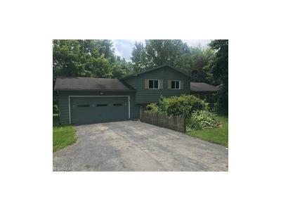Hubbard Single Family Home For Sale: 2227 Hubbard Masury Rd