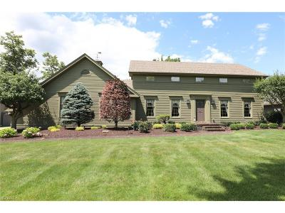 Poland Single Family Home For Sale: 2978 Olde Winter Trl