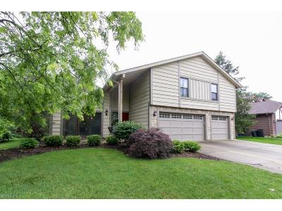 Strongsville Single Family Home For Sale: 17405 Brandywine Dr