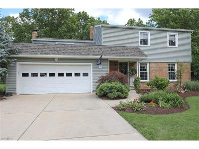 Canfield Single Family Home For Sale: 311 Shadydale Dr