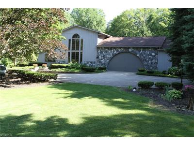 Hinckley Single Family Home For Sale: 2114 Galilee Oval