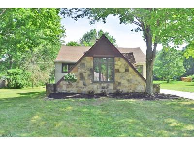 Chagrin Falls Single Family Home For Sale: 101 Hazelwood Dr