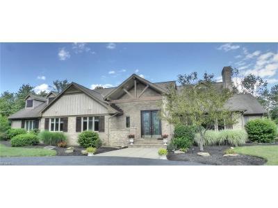 Novelty Single Family Home For Sale: 13839 Braeburn Ln