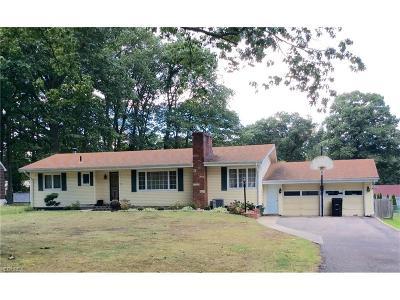 Geneva Single Family Home For Sale: 3149 Martha Dr