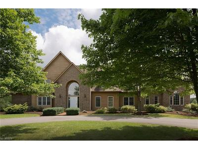 Chesterland Single Family Home For Sale: 13295 Foxmoor Trl