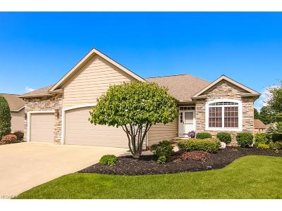 Mentor Single Family Home For Sale: 8745 Wild Flower Way