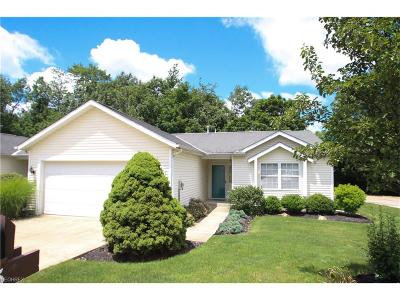 Mentor Condo/Townhouse For Sale: 9785 Country Scene Ln #H-7