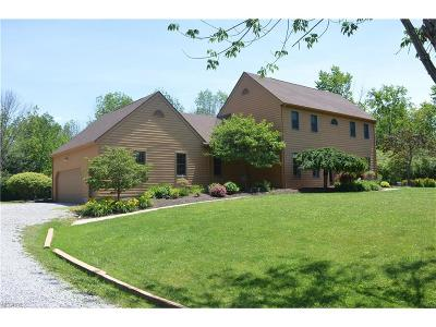 Canfield Single Family Home For Sale: 7131 South Palmyra Rd