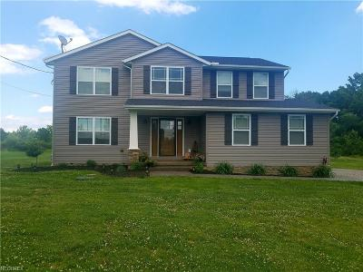 Canfield Single Family Home For Sale: 6855 South Salem Warren-St. Rt. 45 Rd