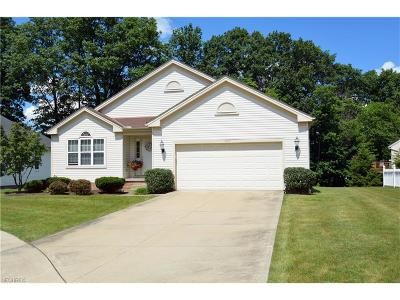 Twinsburg Single Family Home For Sale: 1577 Silver Oak Cir
